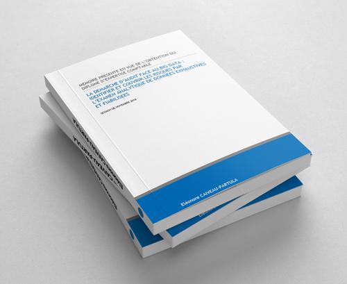 Mémoire d'expertise sur l'audit et la data